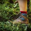 Trekking Shoes in the forest